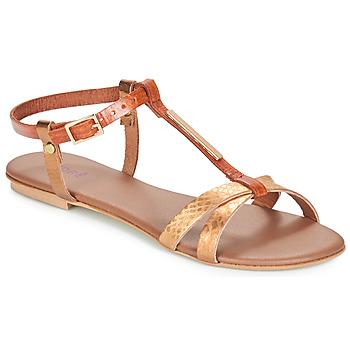 Zapatos Mujer Sandalias André RHODES Marrón / Oro