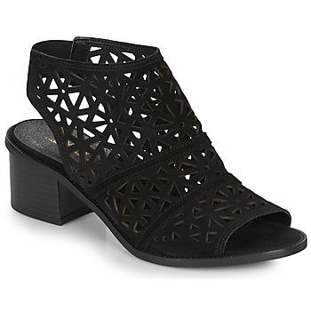 Zapatos Mujer Sandalias André CARIOCA Negro