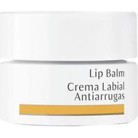 Belleza Mujer Hidratantes & nutritivos Dr. Hauschka Lip Balm Anti-wrinkles  4,5 ml