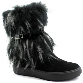 Zapatos Mujer Botines Antarctica ANT-CCC-5508-NE Nero