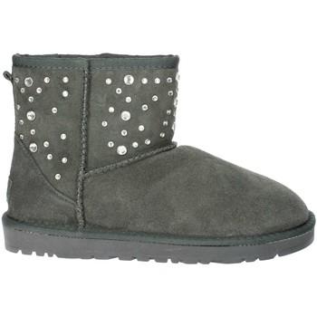 Zapatos Mujer Botas de nieve Pregunta PL5854TZ 002 Gris