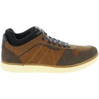 Zapatos Hombre Zapatillas bajas MTNG 84138 Marr?n