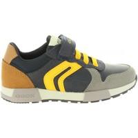 Zapatos Niños Derbie & Richelieu Geox J846NC 0FUAU J ALFIER Azul