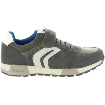 Zapatos Niños Derbie & Richelieu Geox J846NC 0FUAU J ALFIER Gris