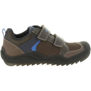 Zapatos Niños Multideporte Geox J8434A 05054 J ARTACH Marrón