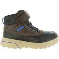 Zapatos Niño Botas de caña baja Geox J847UA 05411 J SVEGGEN Marr?n