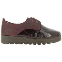 Zapatos Mujer Derbie 24 Hrs 24 Hrs 23830 Burdeos rojo