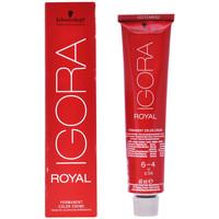 Belleza Tratamiento capilar Schwarzkopf Igora Royal Permanent Color Creme 6-4  60 ml