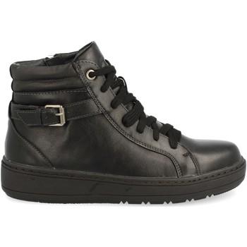 Zapatos Mujer Botines V&d 18-316 Negro