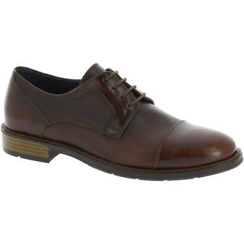 Zapatos Hombre Derbie Raymont 625 BROWN marrone