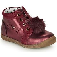 Zapatos Niña Botas de caña baja Catimini CALISTA Burdeo