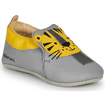 Zapatos Niño Pantuflas Catimini CALINOU Gris / Amarillo