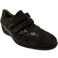 Zapatos Mujer Zapatillas bajas Loren LOL8075m marrone