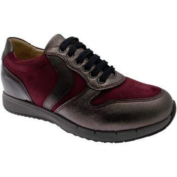 Zapatos Mujer Zapatillas bajas Calzaturificio Loren LOC3818bo tortora