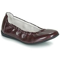 Zapatos Niña Bailarinas-manoletinas Ramdam LIBRE Burdeo