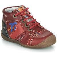 Zapatos Niño Botas de caña baja Catimini CYRUS Rojo