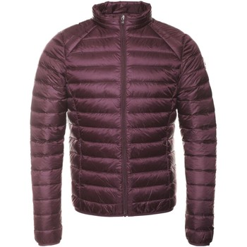 textil Mujer Plumas JOTT Chaquetas & Abrigos MAT - Hombres púrpura