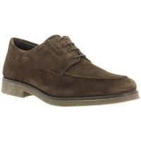 Zapatos Hombre Derbie 24 Hrs 24 Hrs 10463 Marrón Marron