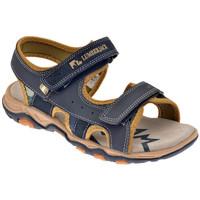 Zapatos Niño Sandalias Lumberjack  Azul