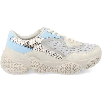 Zapatos Mujer Zapatillas bajas Amy G-225 Gris