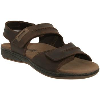 Zapatos Hombre Sandalias Mephisto SAGUN Cuero marrón