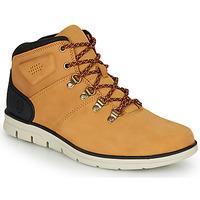 Zapatos Hombre Zapatillas altas Timberland BRADSTREET HIKER Trigo / Marrón