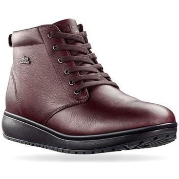 Zapatos Mujer Botas de caña baja Joya Wilma Dark Grey 534