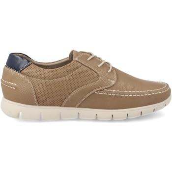 Zapatos Hombre Zapatillas bajas V&d A809 Taupe