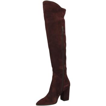 Zapatos Mujer Botas a la rodilla Le Pepé LE PEPE CAMOSCIO vino-vinaccio
