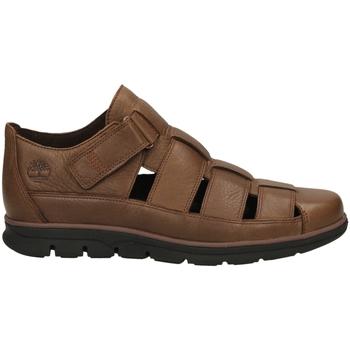 Zapatos Hombre Sandalias Timberland BRADSTREET FISHERMAN soil-marrone
