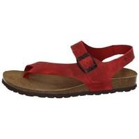 Zapatos Mujer Sandalias Interbios Sandalias bio rojas Rojo