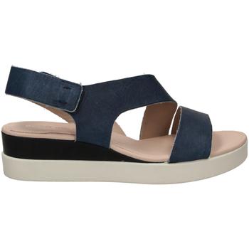 Zapatos Mujer Sandalias Ecco TOUCH SANDAL blumo-blu