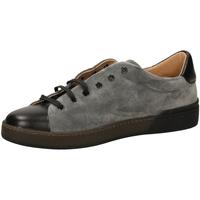 Zapatos Hombre Zapatillas bajas Frau SUEDEBIMATER grigi-grigio