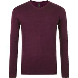 textil Hombre jerséis Sols GLORY SWEATER MEN violeta