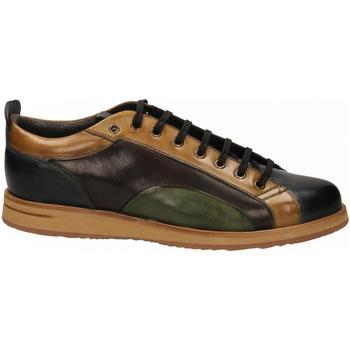Zapatos Hombre Derbie Brecos VITELLO azzurro-legno