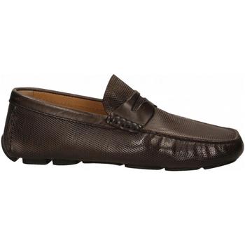 Zapatos Hombre Mocasín Brecos VITELLO cioccolato