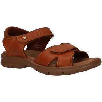 Zapatos Hombre Sandalias Panama Jack SANDERS C10 Beige