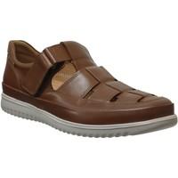 Zapatos Hombre Mocasín Mephisto Tarek Cuero marrón