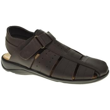 Zapatos Hombre Sandalias Duendy 20 Marrón