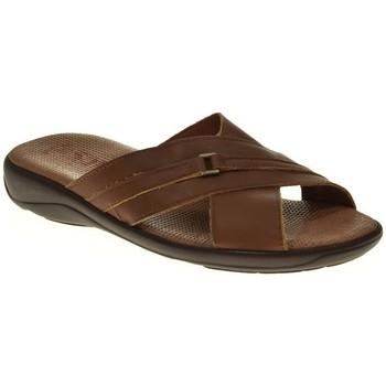 Zapatos Hombre Sandalias Duendy 224 Marrón