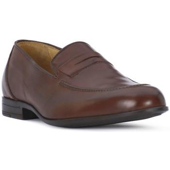Zapatos Hombre Mocasín Ocland NILO SIENA Marrone