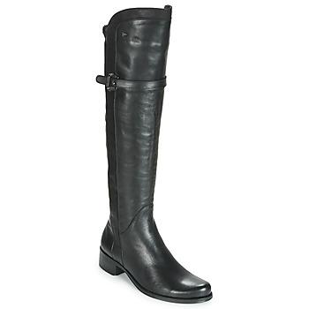 Zapatos Mujer Botas urbanas Dorking DULCE Negro