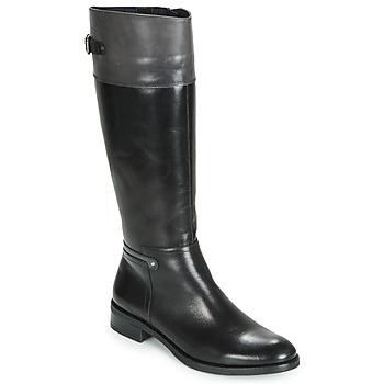 Zapatos Mujer Botas urbanas Dorking TIERRA Negro / Gris