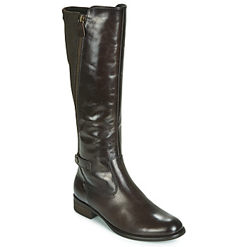Zapatos Mujer Botas urbanas Gabor 3164228 Marrón
