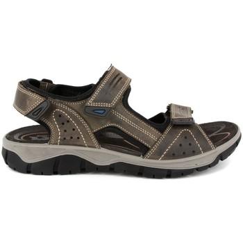 Zapatos Hombre Sandalias de deporte Imac 304370-009 GRIS GRIS