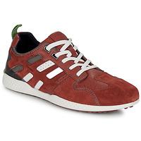 Zapatos Hombre Zapatillas bajas Geox U SNAKE.2 Marrón / Ladrillo