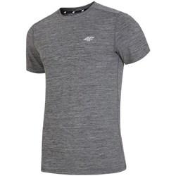 textil Hombre camisetas manga corta 4F H4L19 TSMF002