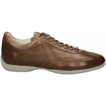 Zapatos Hombre Derbie Santoni PEDULA 7F+INF. GOOSE PLUS e50-marrone-medio