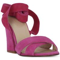 Zapatos Mujer Sandalias Le Fabian FUXIA CAMOSCIO Rosa