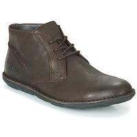 Zapatos Hombre Botas de caña baja Kickers SWIBO Marrón